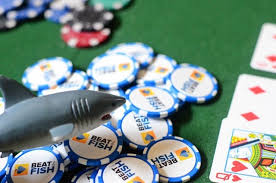 Top 10 Mistakes That Tell the World You Are a Sit N Go Poker Fish